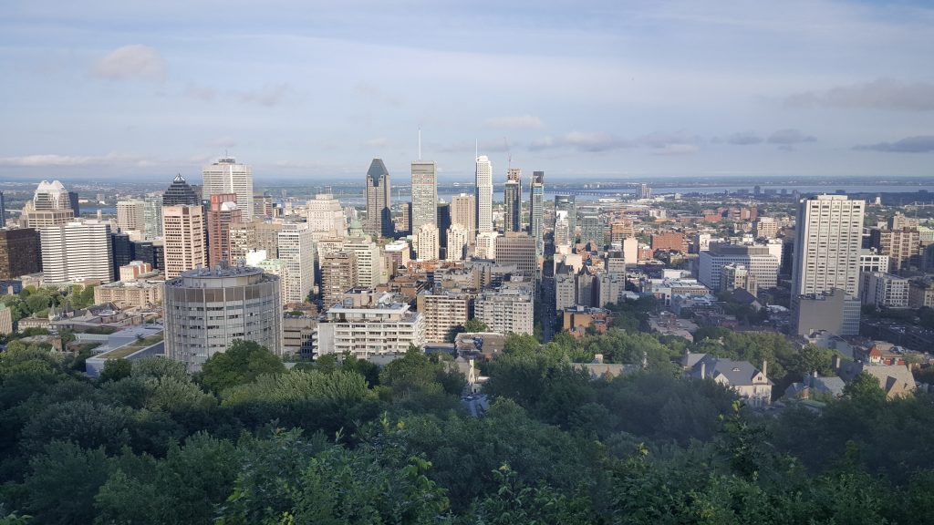 What a view! Montreal from the top of Mount Royal.